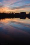 jackson wetland 2_web